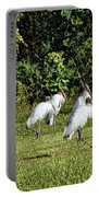 Wood Storks 2 - There Is Always One In A Crowd Portable Battery Charger