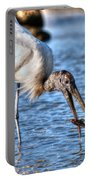 Wood Storks Breakfast Lunch And Dinner Portable Battery Charger