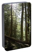Wooded Serenity Portable Battery Charger