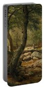 Woodland Stream Portable Battery Charger
