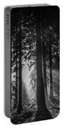Woodland Walks Silver Rays B/w Portable Battery Charger
