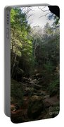 Woodlands Portable Battery Charger