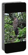 Woodpecker In The Apple Tree Portable Battery Charger