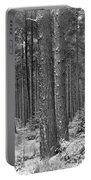 Woods In Winter, Slaley Portable Battery Charger