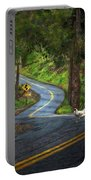 Woods Road 1 - Summer Portable Battery Charger
