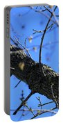 Woody Woodpecker Portable Battery Charger