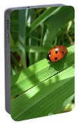 World Of Ladybug 1 Portable Battery Charger