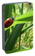 World Of Ladybug 2 Portable Battery Charger