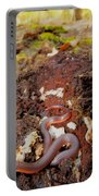 Worm Snake Portable Battery Charger