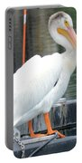 Wyoming Pelican Portable Battery Charger