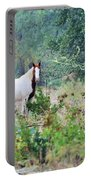 Horse0007 Portable Battery Charger