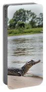 Yacare Caiman On Beach With Passing Boat Portable Battery Charger