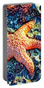 Yachats Oregon - Sea Star Portable Battery Charger