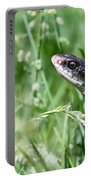 Yard Snake Portable Battery Charger