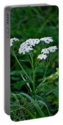 Yarrow Flowerheads Portable Battery Charger