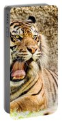 Yawning Bengal Tiger Portable Battery Charger