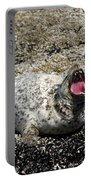 Yawning Harbor Seal - Oregon Coast Portable Battery Charger