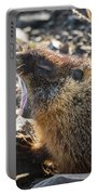 Yawning Marmot Portable Battery Charger