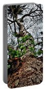 Ye Ole Tree At Chichen Itza Portable Battery Charger