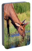 Yearling Elk Portable Battery Charger