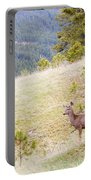 Yearling Mule Deer In The Pike National Forest Portable Battery Charger