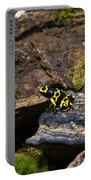 Yellow And Black Dart Frog Portable Battery Charger
