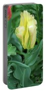 Yellow And Green Striped Tulip Flower Bud Portable Battery Charger
