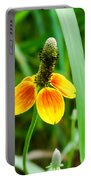 Yellow And Orange Clasping Coneflower Portable Battery Charger