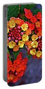 Yellow And Orange Lantana At Pilgrim Place In Claremont-california Portable Battery Charger
