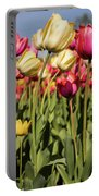 Yellow And Pink Tulips V 2018 Portable Battery Charger