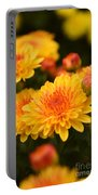 Yellow And Red Autumn Mums Closeup I Portable Battery Charger
