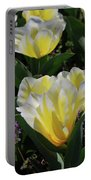 Yellow And White Tulips Flowering In A Garden Portable Battery Charger