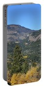 Yellow Aspen Portable Battery Charger