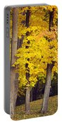 Yellow Autumn Trees Portable Battery Charger