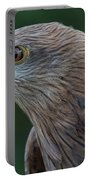 Yellow-beaked Kite Portable Battery Charger