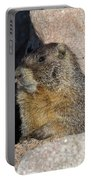 Yellow-bellied Marmot Poses For Pictures Portable Battery Charger