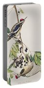 Yellow Bellied Woodpecker Portable Battery Charger
