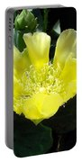 Yellow Bonnet, Cactus Portable Battery Charger