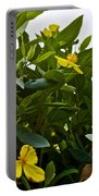 Yellow Poppy Bush Flowers At Pilgrim Place In Claremont-california Portable Battery Charger