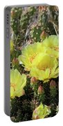 Yellow Cactus Blooms Portable Battery Charger