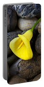 Yellow Calla Lily On Rocks Portable Battery Charger