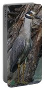 Yellow Crested Night Heron On Log Portable Battery Charger