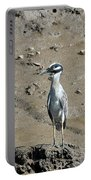 Yellow-crowned Night-heron Portable Battery Charger