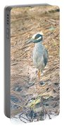 Yellow Crowned Night Heron Along The Tidal Creek Portable Battery Charger