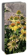 Yellow Echinacea, Straw Flowers Gray Stone Background 2 9132017  Portable Battery Charger