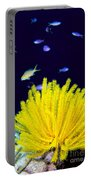 Yellow Feather Star Portable Battery Charger