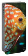 Yellow Fish Profile Portable Battery Charger