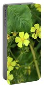 Yellow Flower And A Black Bug  Portable Battery Charger
