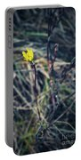 Yellow Flower In Dry Autumn Grass Portable Battery Charger