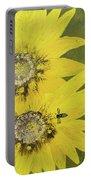 Yellow Gazanias And Bee  Portable Battery Charger